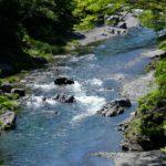 東京散歩:多摩川上流を歩く