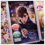 『ファンタスティック・ビーストと魔法使いの旅』で英語の勉強