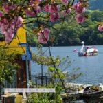 4月のカレンダー/相模湖