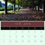 10月のカレンダーは新宿御苑