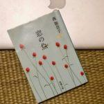 大人の英作勉強:西加奈子の『窓の魚』