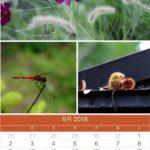 9月のカレンダー:アッ、秋